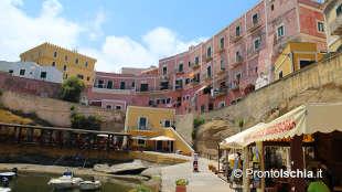 Un'opportunità in più se vieni in vacanza a Ischia d'estate